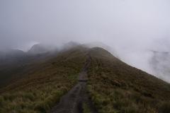 Auf dem Weg zum verdeckten Rucu Pichincha 4696m ü.M.