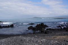Las Tintoreras - Isla Isabela