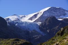 Sicht zum mächtigen Gwächtenhorn, davor der Tierberg und Gletscherabbruch des Steigletschers
