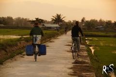 auf Feldwegen zwischen Reisfeldern unterwegs..