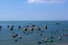 Der Konsum von Meeresfrüchten in asiatischen Ländern hat uns schon seit wir zu reisen begonnen haben irgendwie auch beschäftigt. Irgendwie scheint uns das ganze überaus nicht nachhaltig zu sein.
