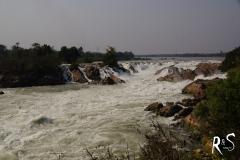 Khong Phapheng - hier donnert der sonst zahme Mekong in seiner ganzen Breite 15m in die Tiefe! Dies hier ist jedoch nur ein Flussarm von ungefähr fünf!