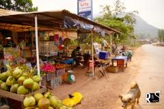 Mittagessen unterwegs - für zwei Nudelsuppen und eine Kokosnuss bezahlen wir 26 000 Kip (2.70 Chf)