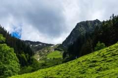 Im Aufstieg ab der Alp Alpetli. Sicht Richtung die Felsen der Chatz und Mus und den Sattel zwischen Walalpgrat und eben dieser.
