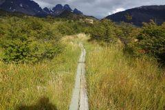 praktischer Steg zur Überquerung von einem der vielen Sumpfgebiete