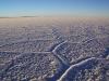 Salar de Uyuni - grösste Salzwüste der Erde!
