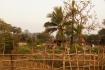 In der unmittelbaren Umgebung der Angkor-Tempeln wohnen Menschen unter ganz einfachen Bedingungen.