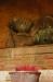 Schlafender Buddha im Turm des Tempels - wir zünden ein Räucherstäbchen an, verbeugen uns in buddhistisch-hinduistischer Art 3 Mal und stecken es in die Tonschale. Eine Mönchin bindet uns für good luck ein Bändeli ums Handgelenk...