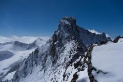 Weiterer Verlauf zum Piz Bernina - die schwierigsten Passagen folgen noch (hier sind wir bereits fast 8 Stunden unterwegs)