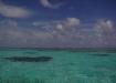 the caribbean ocean...