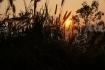 Sonnenaufgang - jeden Tag eine andersartige Belohnung für das frühe Aufstehen