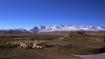 Südtibetische Landschaft mit dem hohen Himalayakamm im Hintergrund