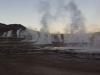 Dampfsäulen der Geysire in der Dämmerung
