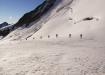 überraschend begegnet uns ein Tatzelwurm in der Stille der Gletscherwelt