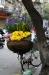 mobiler Blumenladen