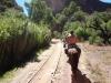 entlang der Geleise zurück Richtung Tupiza