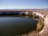 Ojos del Salar - Augen der Salzwüste