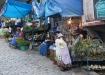 der  Hexenmarkt