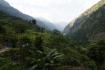 Reisfelder um Lapubesi