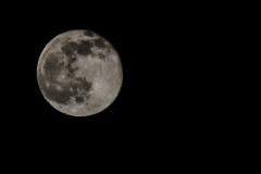 full moon by night..