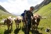 netter Empfang auf der Alp Strem