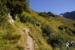 Auf dem Weg zur Silvrettahütte - es war ganz schön heiss!