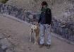 Sarah's tierischer Begleiter - wir hoffen ihn in die Schweiz einfliegen