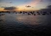 Sonnenuntergang über Puerto Baquerizo Moreno - Hauptstadt der ecuadorianischen Provinz Galapagos