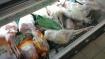 Ein normaler Gefrierschrank im Supermarkt