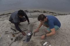 """""""lagoon tea"""" bei Sonnenuntergang auf einer  Sandbank"""