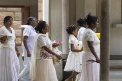 Pilger Sri Maha Bodhi