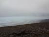 wer guckt den hier hervor? Glaciar Grey noch gut getarnt!  Leider wurden wir heute nicht mit einem schönen Panorama über den riesigen Glaciar Grey (270 Km2) belohnt...