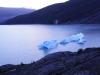 Eisberge im Lago Grey