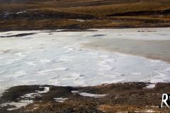 gefroren