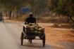 Kokosnuss-Transport