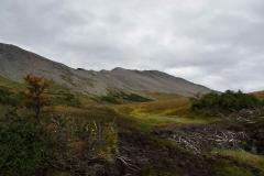 Hochmoorartiges Terrain nach der Baumgrenze