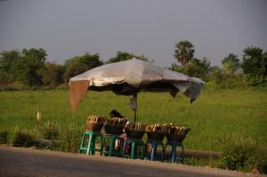in Bambus gebackenes Cake aus Klebreis, Bohnen, geröstete Kokosnuss und deren Milch