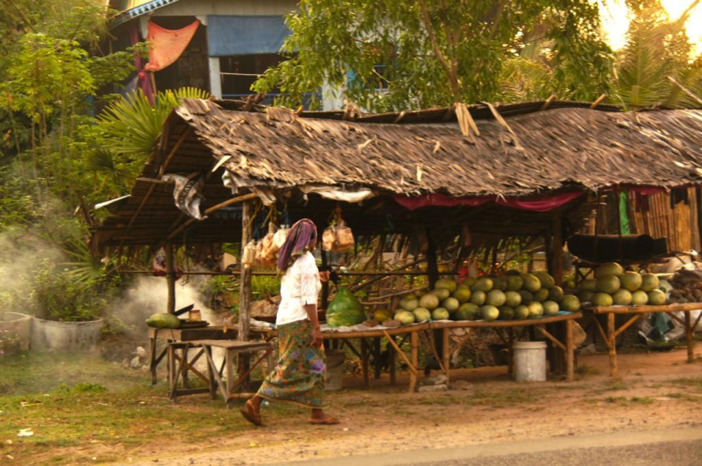 kambodschanisches Dorfleben II