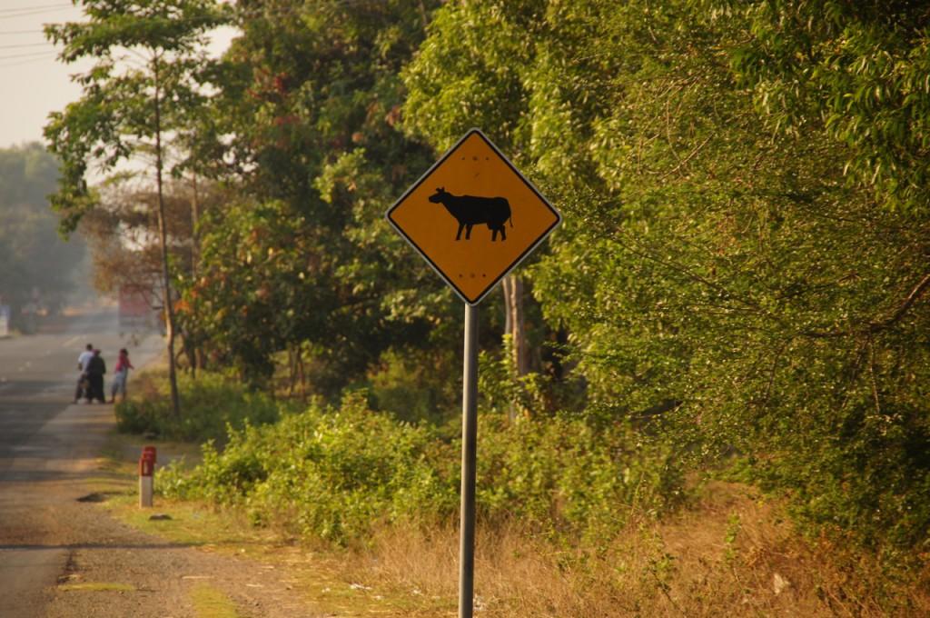 Bekanntes Signal - natürlich gibt es in ganz Kambodscha keine Zäune - die Tiere queren gut und gerne die Strasse, wann immer es ihnen passt!