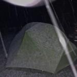abends beginnt es zu schneien - was uns aber deutlich mehr Sorgen bereitet ist, dass Gianni (der Bär M25) in der Nacht zuvor im Dorf 5 Schafe gerissen hat..