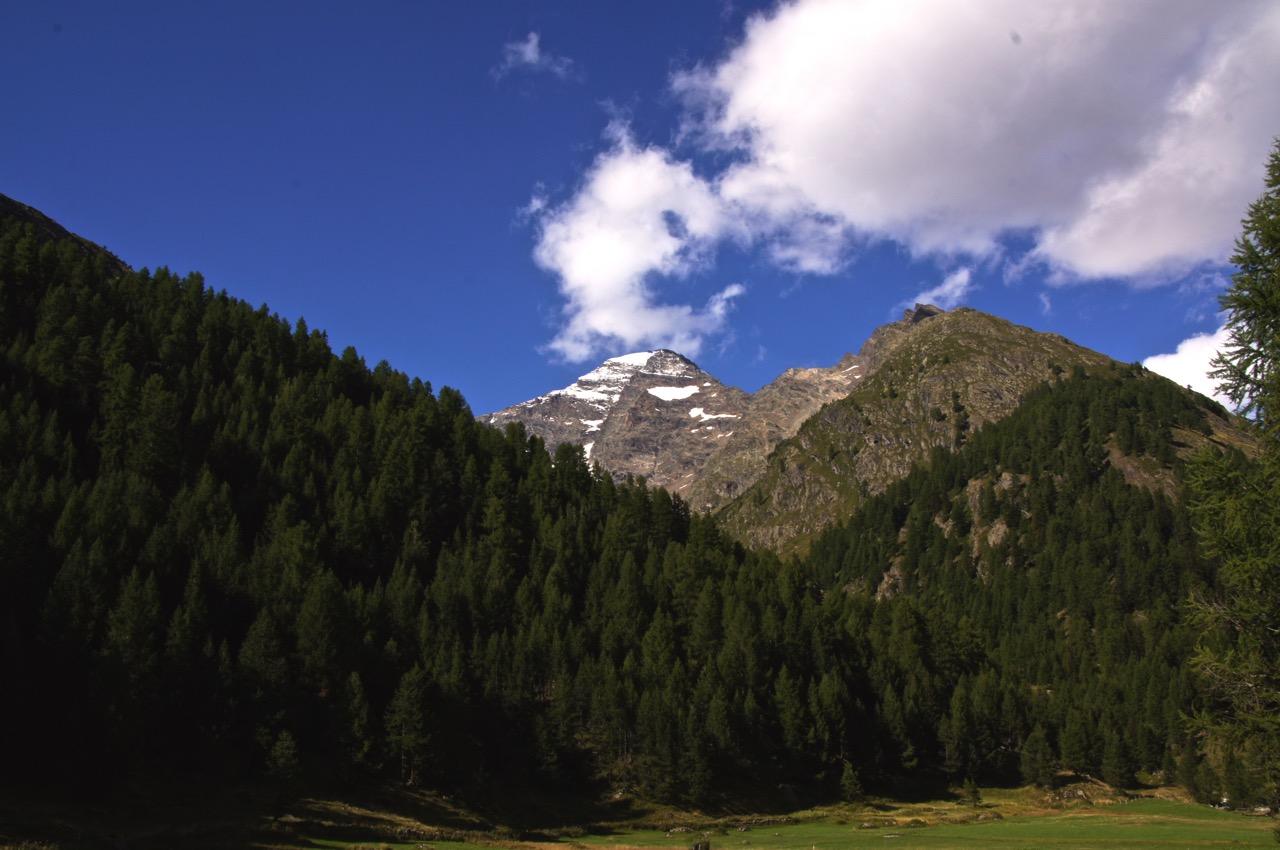 2000 Höhenmeter tiefer auf der Fafleralp im Lötschental - ein letzter, ehrfürchtiger Blick zurück auf das Lauterbrunner Breithorn!