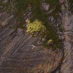Sedimentablagerungen, die wohl mehrfach geknickt wurden.