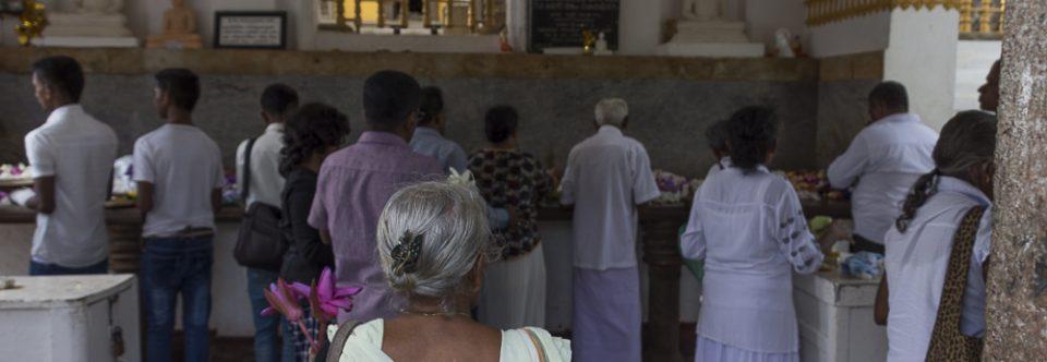 Sri Lanka – von der West- an die Ostküste Sri Lanka's